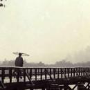 An academic look at the history of Tameshigiri